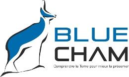 Logo_BluechamA_transparent